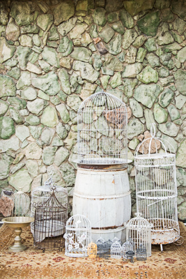Gold-Dust-Vintage-Rentals-Inventory-Mansfield-Texas-The-Purple-Pebble-Photography-furniture_event_wedding_chairs_peyronet_photography-trays-silver-gold-bird-cages